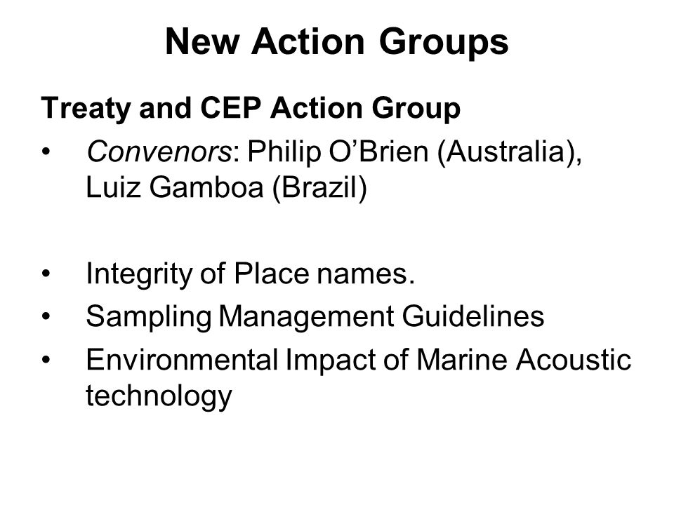 New Action Groups Treaty and CEP Action Group Convenors: Philip OBrien (Australia), Luiz Gamboa (Brazil) Integrity of Place names.