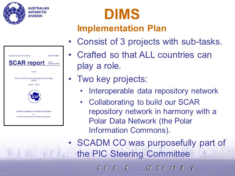 DIMS Implementation Plan Consist of 3 projects with sub-tasks.