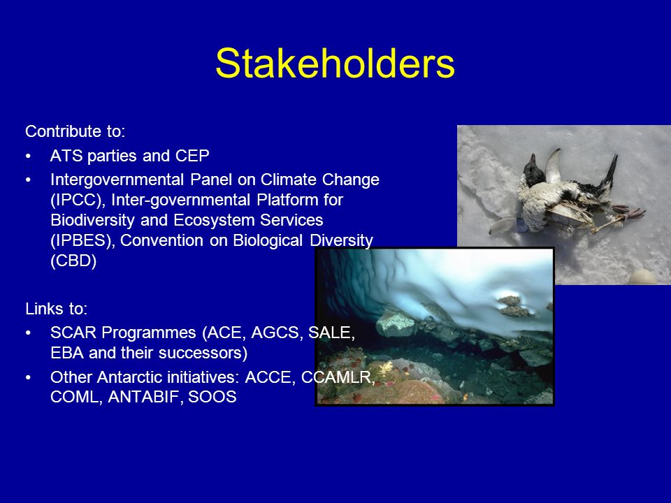 Stakeholders Contribute to: ATS parties and CEP Intergovernmental Panel on Climate Change (IPCC), Inter-governmental Platform for Biodiversity and Ecosystem Services (IPBES), Convention on Biological Diversity (CBD) Links to: SCAR Programmes (ACE, AGCS, SALE, EBA and their successors) Other Antarctic initiatives: ACCE, CCAMLR, COML, ANTABIF, SOOS