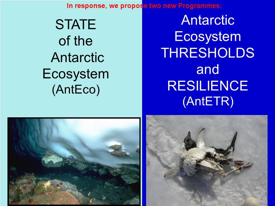 STATE of the Antarctic Ecosystem (AntEco) In response, we propose two new Programmes: Antarctic Ecosystem THRESHOLDS and RESILIENCE (AntETR)
