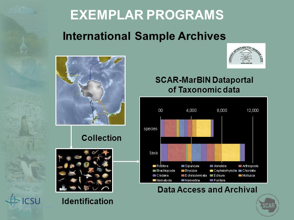 SCAR-MarBIN Dataportal of Taxonomic data Collection Identification Data Access and Archival International Sample Archives EXEMPLAR PROGRAMS