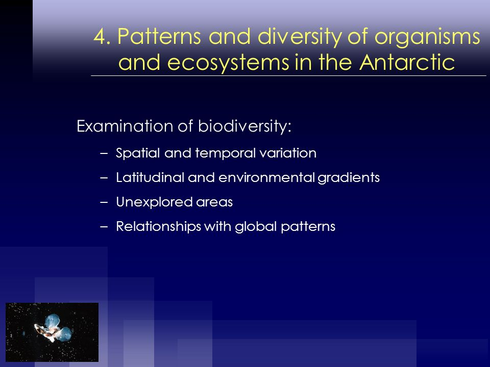 4. Patterns and diversity of organisms and ecosystems in the Antarctic Examination of biodiversity: –Spatial and temporal variation –Latitudinal and e