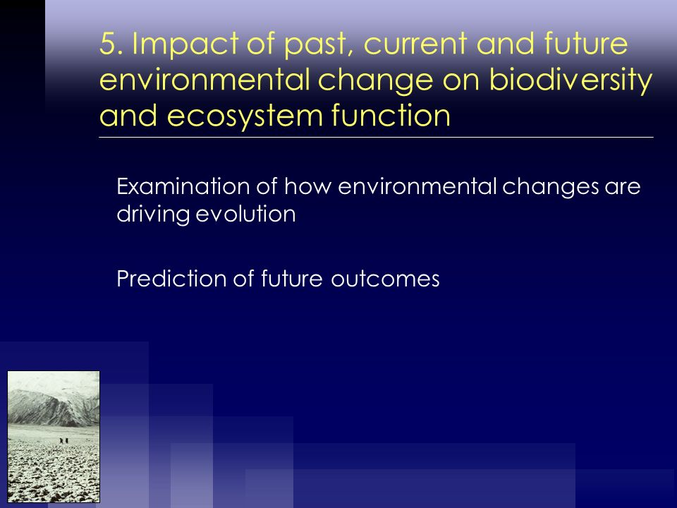 5. Impact of past, current and future environmental change on biodiversity and ecosystem function Examination of how environmental changes are driving