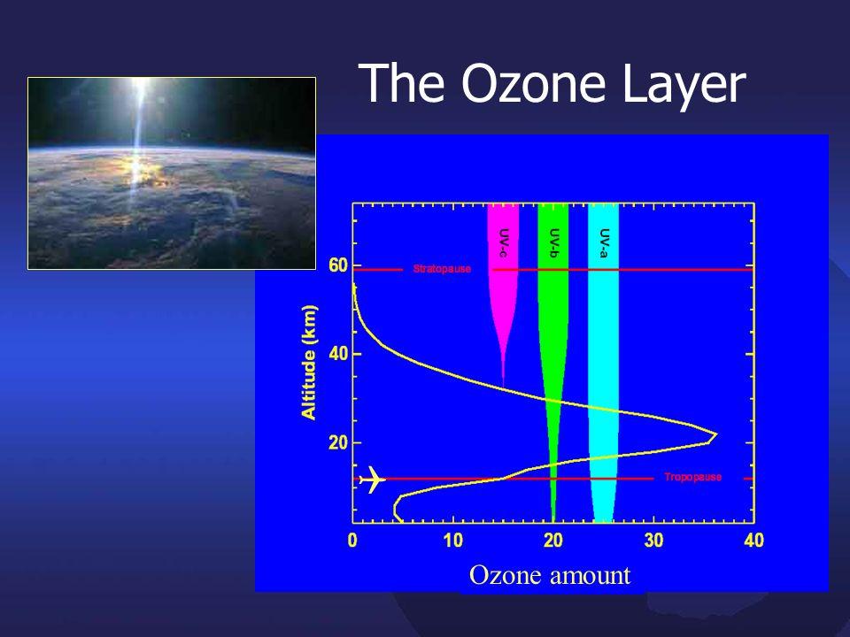 The Ozone Layer Ozone amount