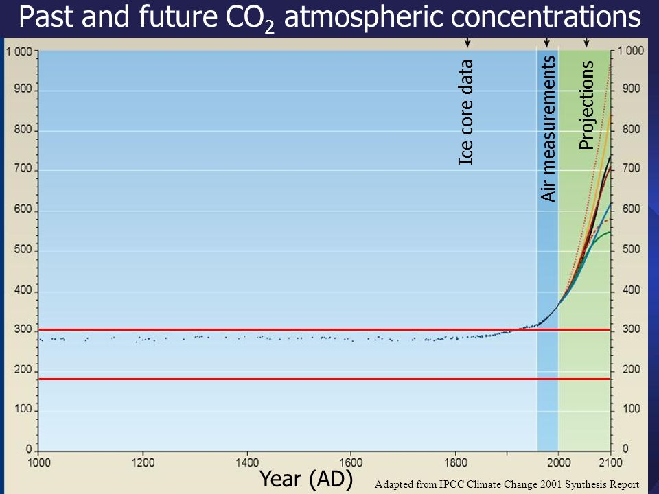 Past and future CO 2 atmospheric concentrations Year (AD) Projections Air measurements Ice core data Adapted from IPCC Climate Change 2001 Synthesis Report