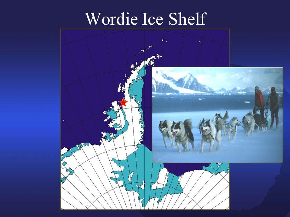 Wordie Ice Shelf