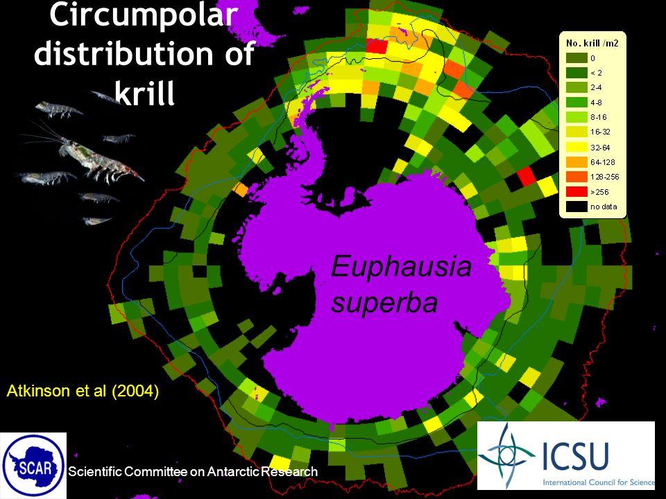 Scientific Committee on Antarctic Research Atkinson et al (2004) Circumpolar distribution of krill Euphausia superba