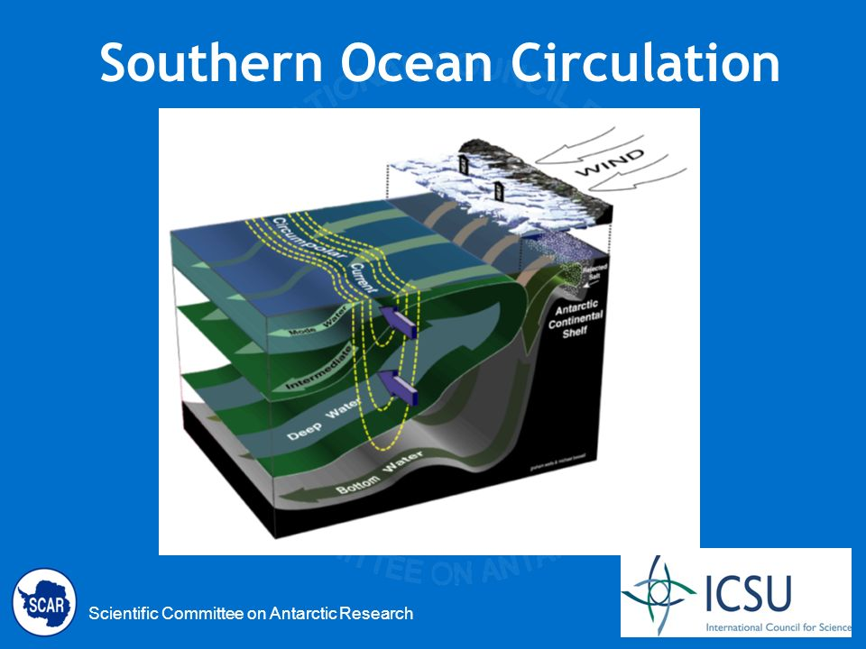 Scientific Committee on Antarctic Research Southern Ocean Circulation