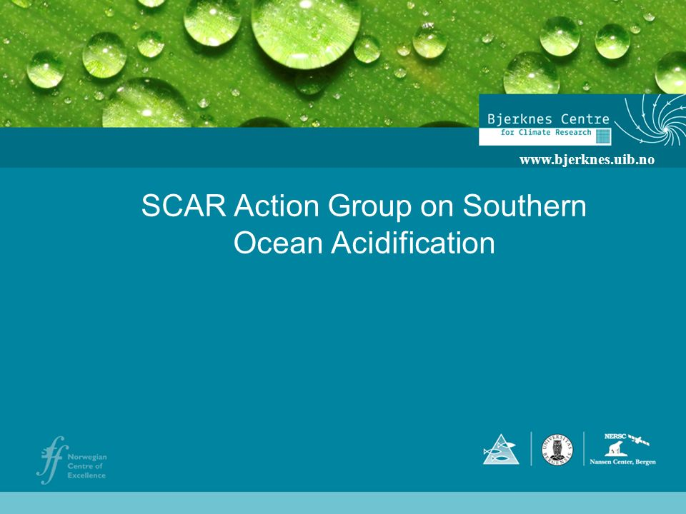 SCAR Action Group on Southern Ocean Acidification www.bjerknes.uib.no