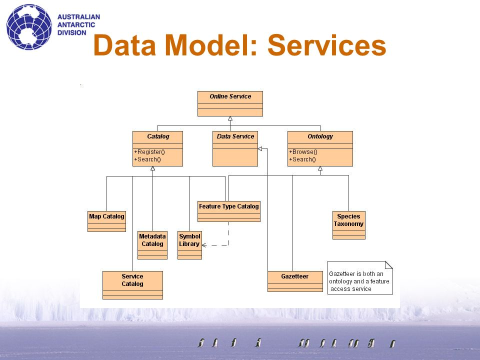 Data Model: Services