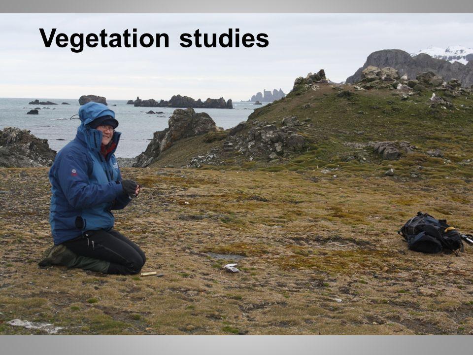 Vegetation studies