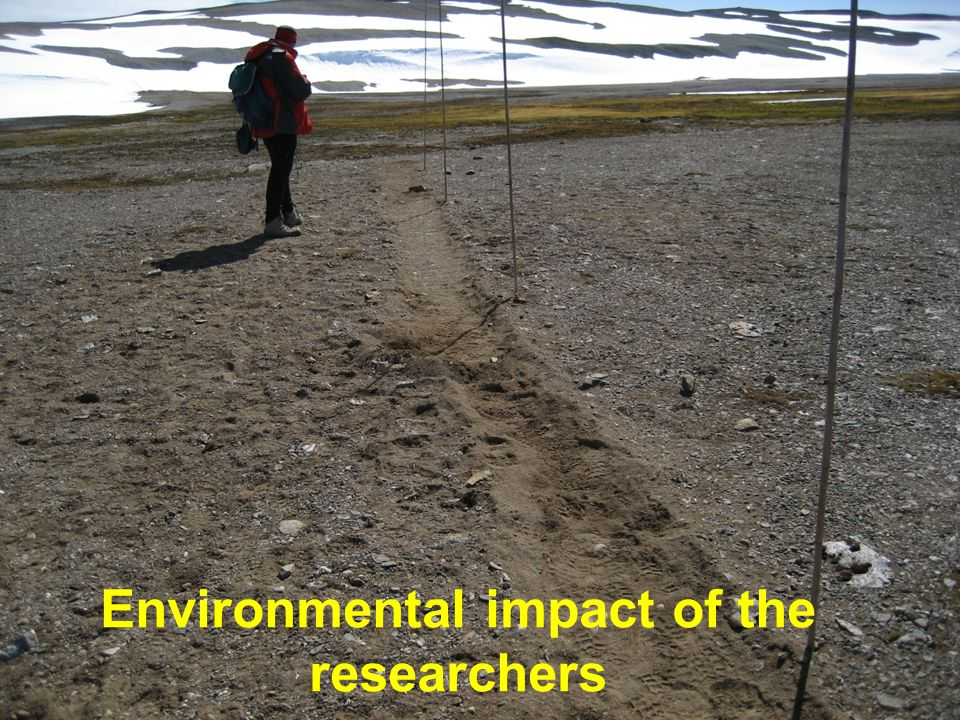 Environmental impact of the researchers