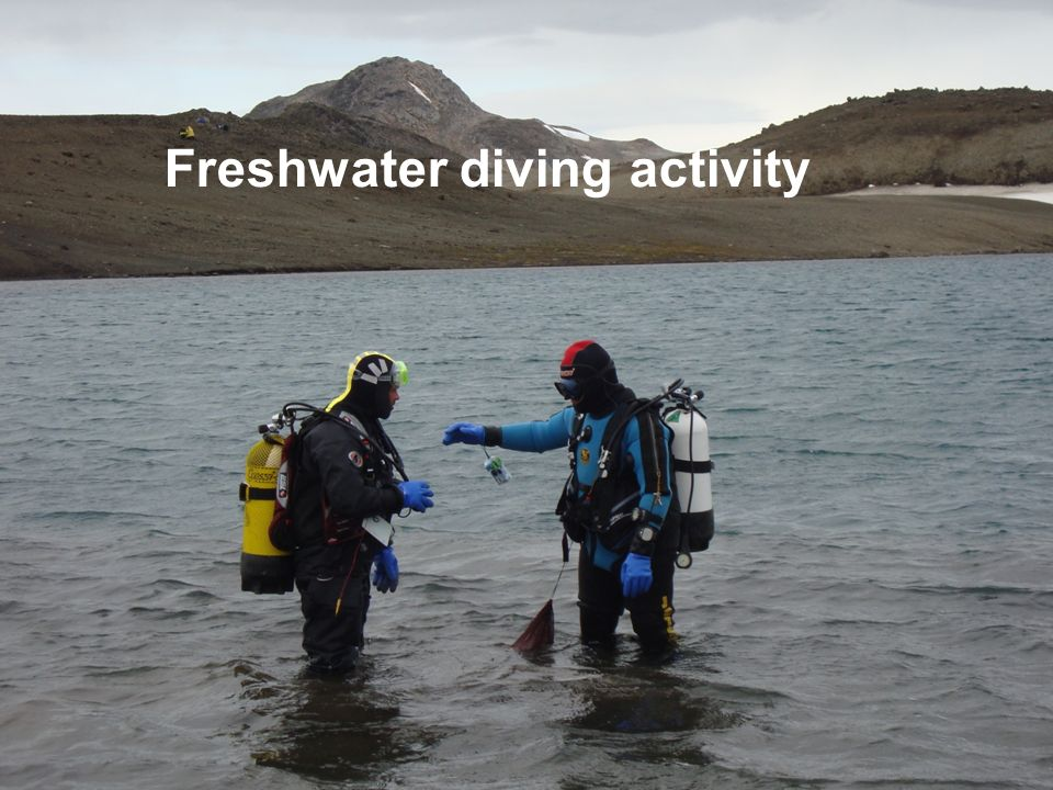 Freshwater diving activity