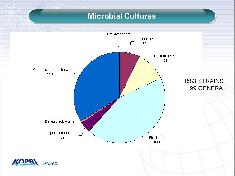 1583 STRAINS 99 GENERA Microbial Cultures