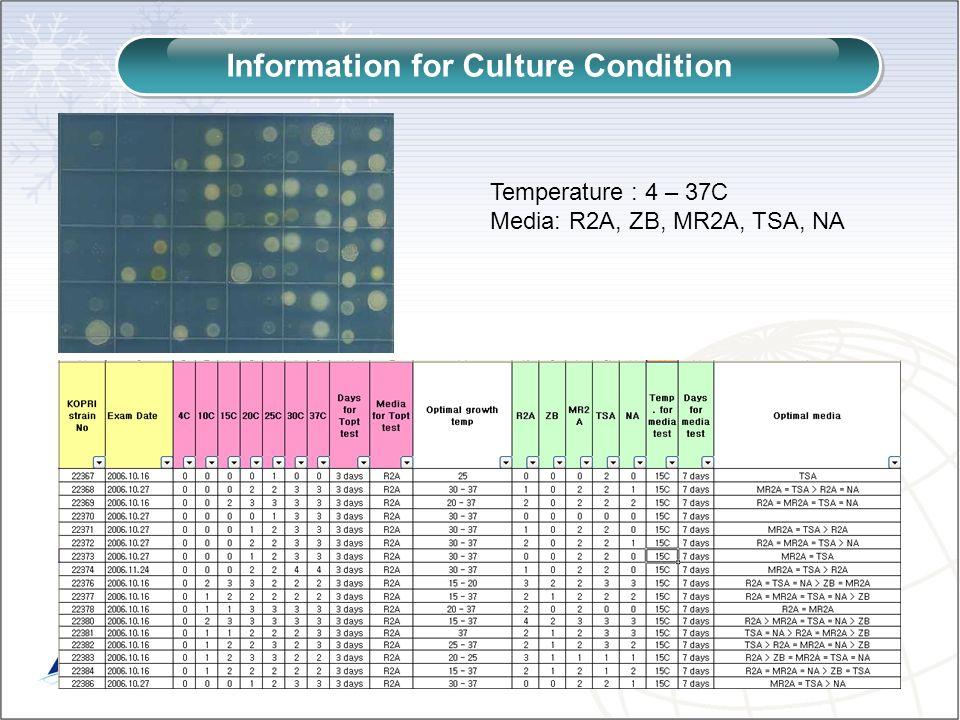 Information for Culture Condition Temperature : 4 – 37C Media: R2A, ZB, MR2A, TSA, NA