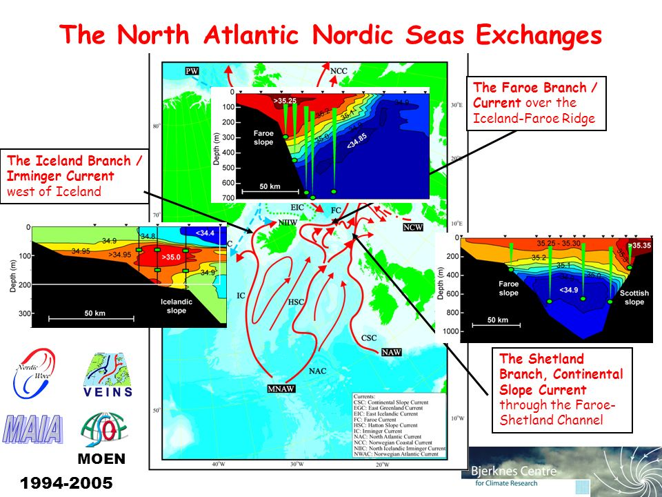 The North Atlantic Nordic Seas Exchanges The Iceland Branch / Irminger Current west of Iceland The Shetland Branch, Continental Slope Current through the Faroe- Shetland Channel The Faroe Branch / Current over the Iceland-Faroe Ridge MOEN 1994-2005