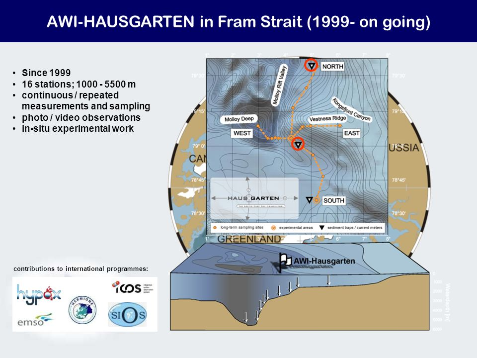 AWI-HAUSGARTEN in Fram Strait (1999- on going) Since 1999 16 stations; 1000 - 5500 m continuous / repeated measurements and sampling photo / video observations in-situ experimental work contributions to international programmes: