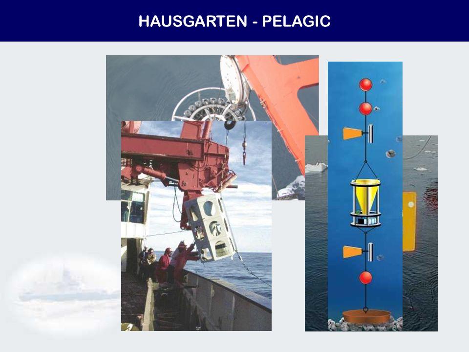 HAUSGARTEN - PELAGIC
