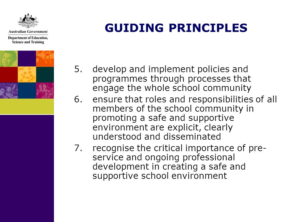GUIDING PRINCIPLES 5.develop and implement policies and programmes through processes that engage the whole school community 6.ensure that roles and re