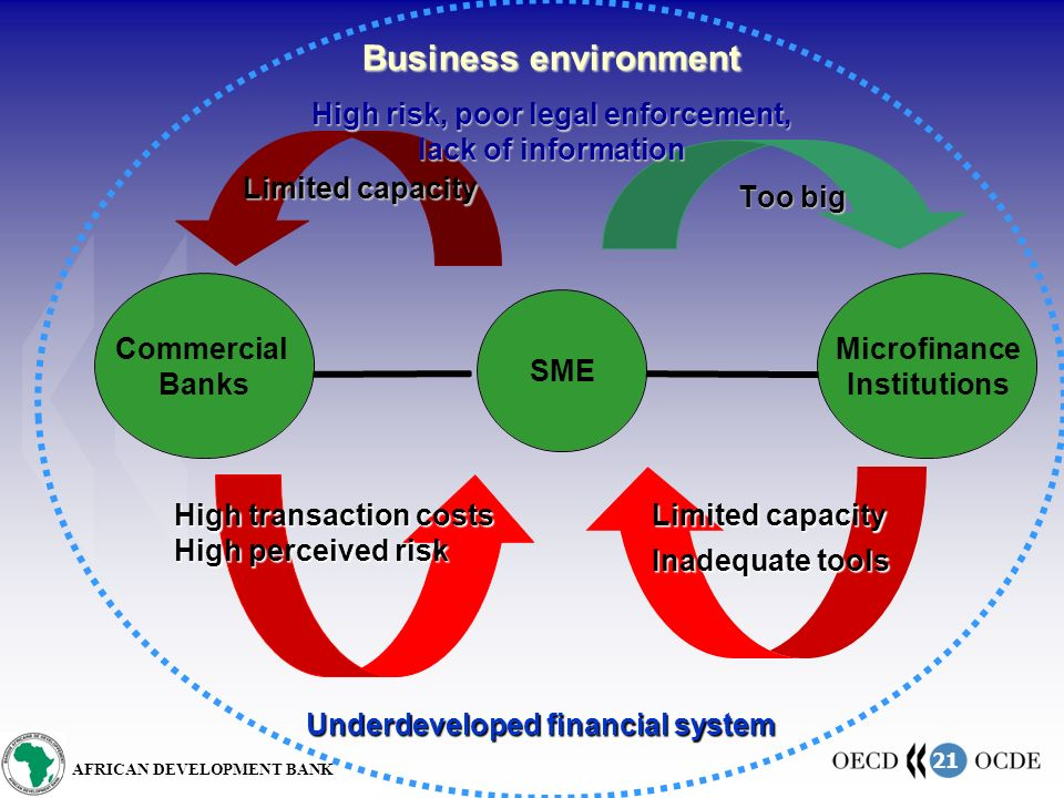 21 AFRICAN DEVELOPMENT BANK Limited capacity Too big Business environment High risk, poor legal enforcement, lack of information High transaction costs High perceived risk Limited capacity Inadequate tools Underdeveloped financial system