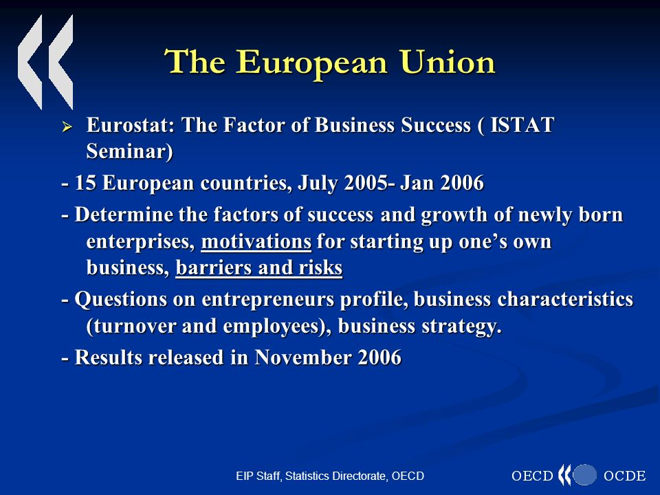 EIP Staff, Statistics Directorate, OECD The European Union Eurostat: The Factor of Business Success ( ISTAT Seminar) Eurostat: The Factor of Business Success ( ISTAT Seminar) - 15 European countries, July 2005- Jan 2006 - Determine the factors of success and growth of newly born enterprises, motivations for starting up ones own business, barriers and risks - Questions on entrepreneurs profile, business characteristics (turnover and employees), business strategy.