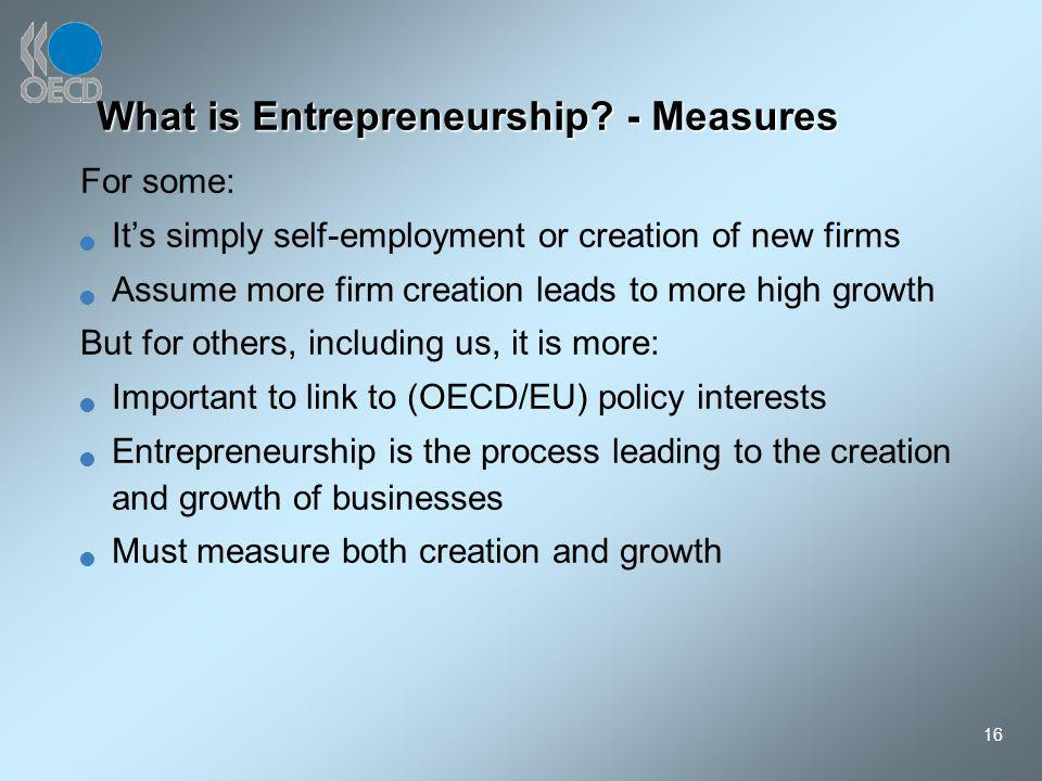 16 What is Entrepreneurship? - Measures For some: Its simply self-employment or creation of new firms Assume more firm creation leads to more high gro