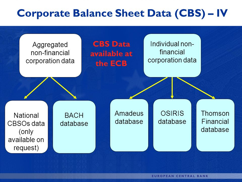Aggregated non-financial corporation data National CBSOs data (only available on request) BACH database Individual non- financial corporation data Ama