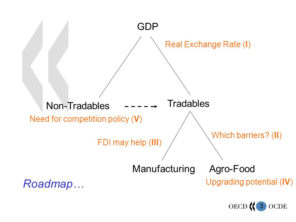 3 GDP Tradables Non-Tradables ManufacturingAgro-Food Real Exchange Rate (I) Which barriers? (II) Upgrading potential (IV) Need for competition policy