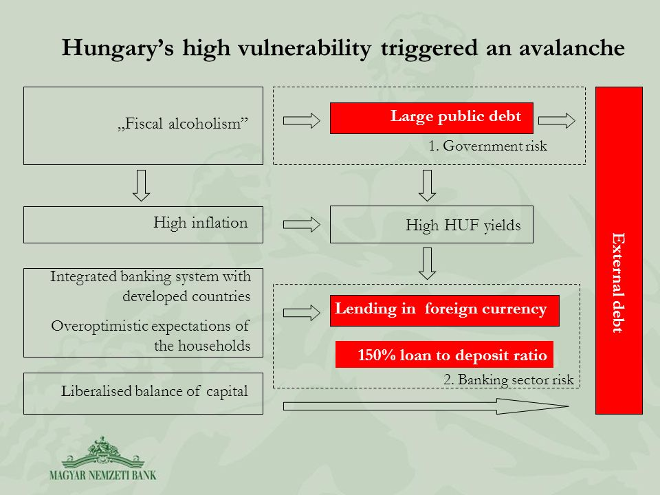 Hungarys high vulnerability triggered an avalanche Integrated banking system with developed countries Overoptimistic expectations of the households Fiscal alcoholism High inflation Large public debt Lending in foreign currency Liberalised balance of capital External debt High HUF yields 2.