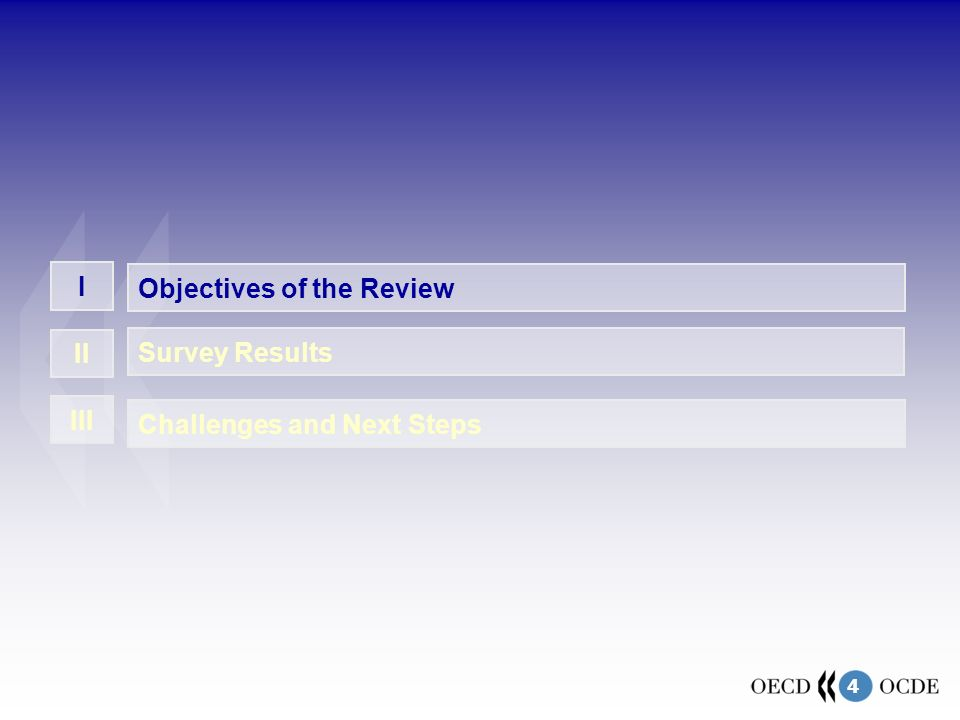 4 Challenges and Next Steps I II III Objectives of the Review Survey Results