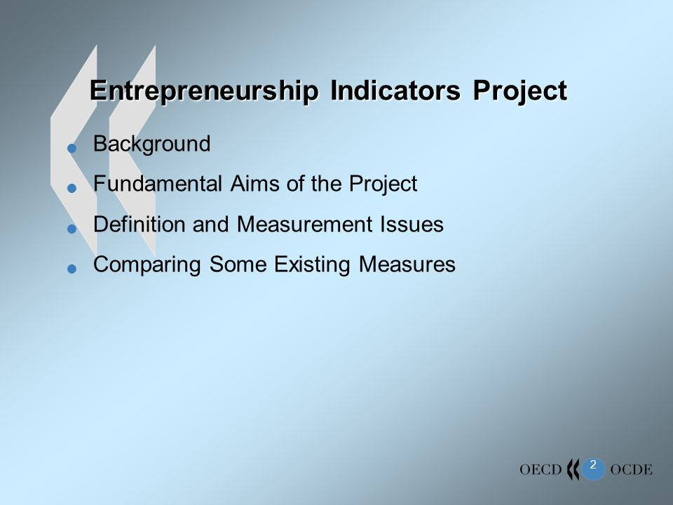 2 Entrepreneurship Indicators Project Background Fundamental Aims of the Project Definition and Measurement Issues Comparing Some Existing Measures