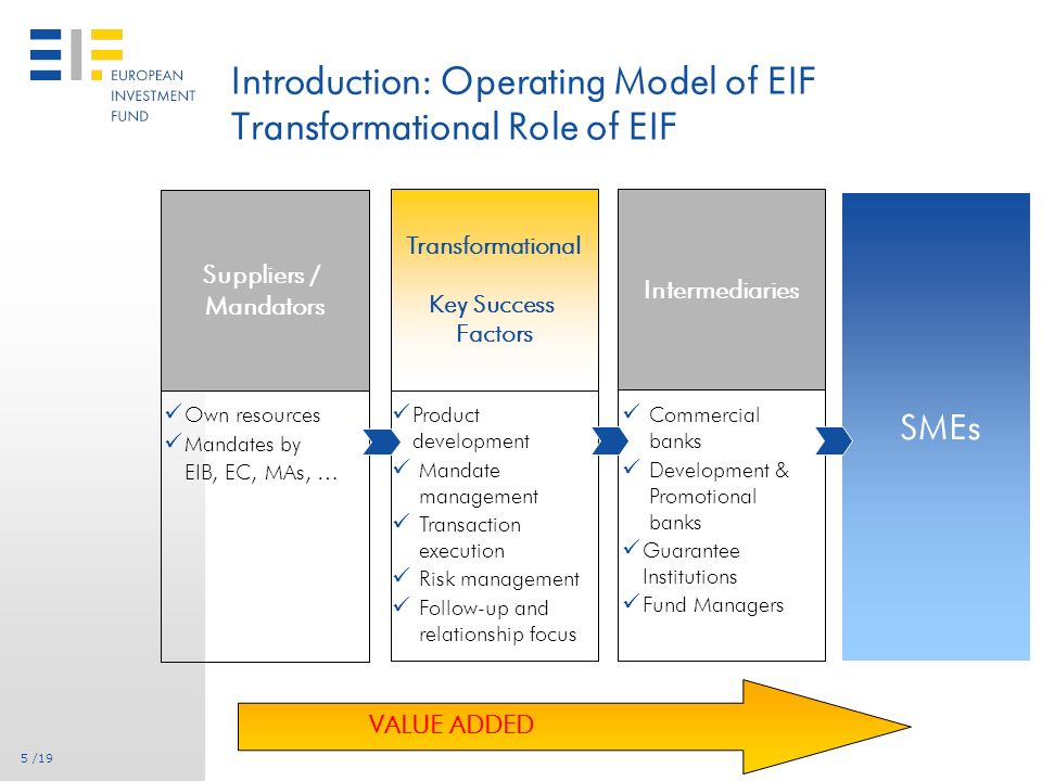 4 /19 Introduction: EIFs Shareholders EIB: Main Shareholder (61%) European Investment Banks shareholders: 27 EU Member States European Community represented by the European Commission (29%) 30 public and private financial institutions from 17 countries (9%)