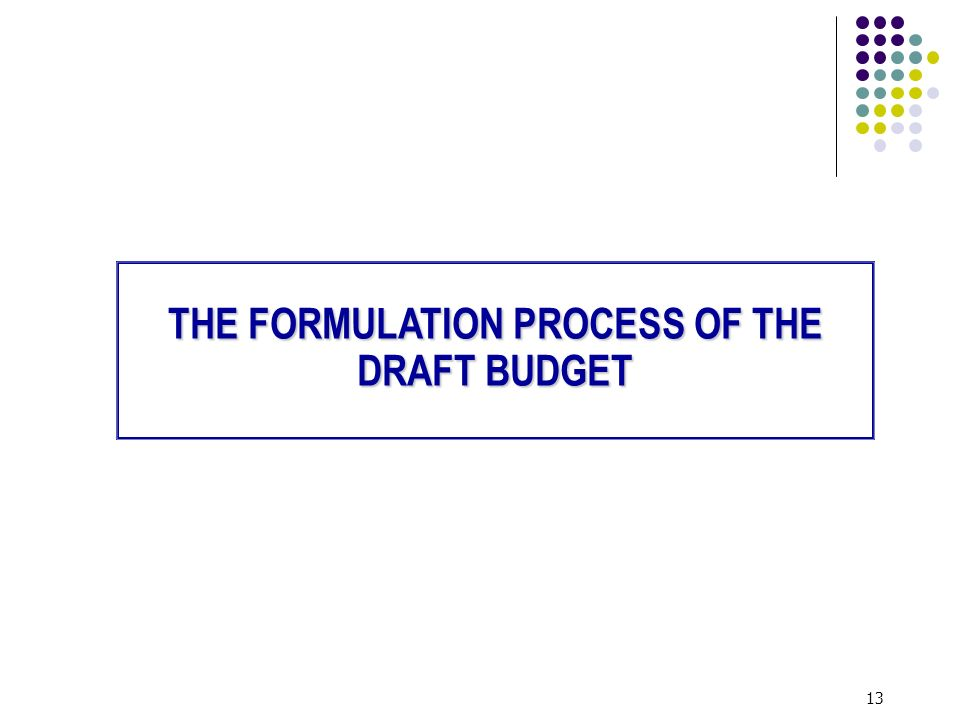 13 THE FORMULATION PROCESS OF THE DRAFT BUDGET