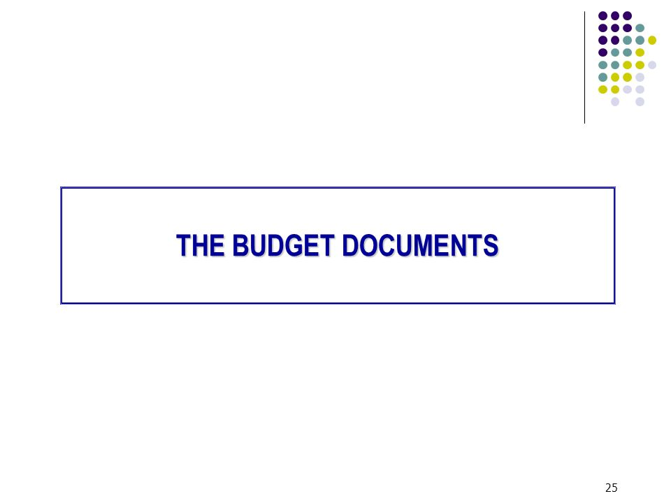 25 THE BUDGET DOCUMENTS