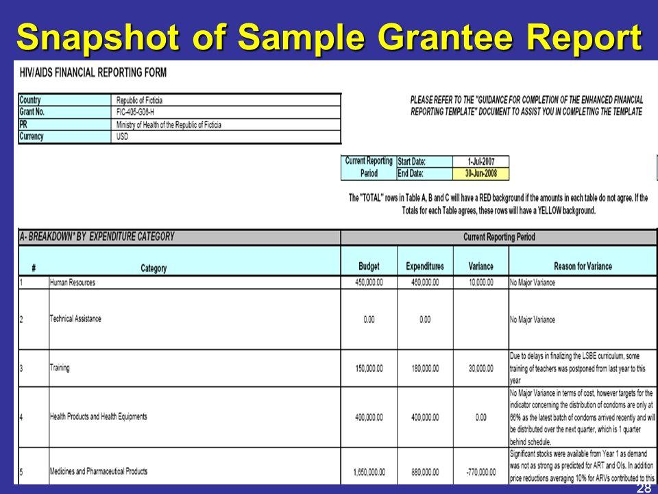 28 Snapshot of Sample Grantee Report