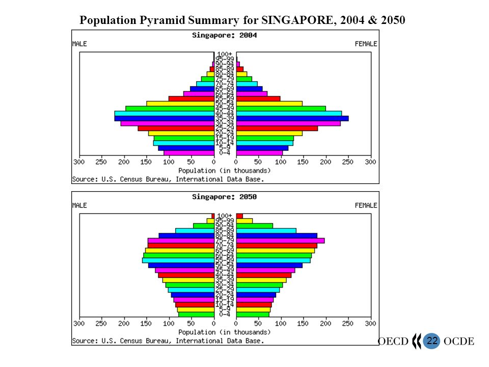 22 Population Pyramid Summary for SINGAPORE, 2004 & 2050