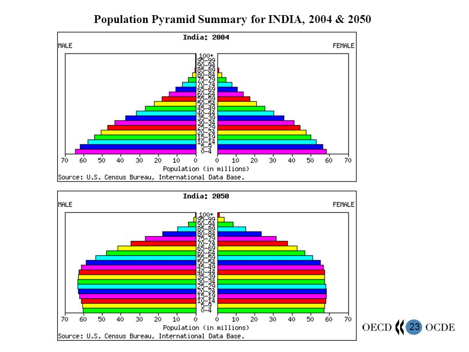 23 Population Pyramid Summary for INDIA, 2004 & 2050