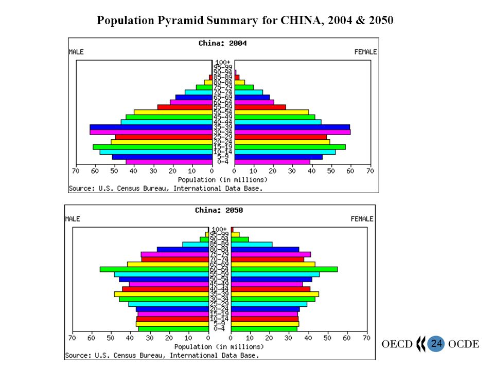 24 Population Pyramid Summary for CHINA, 2004 & 2050