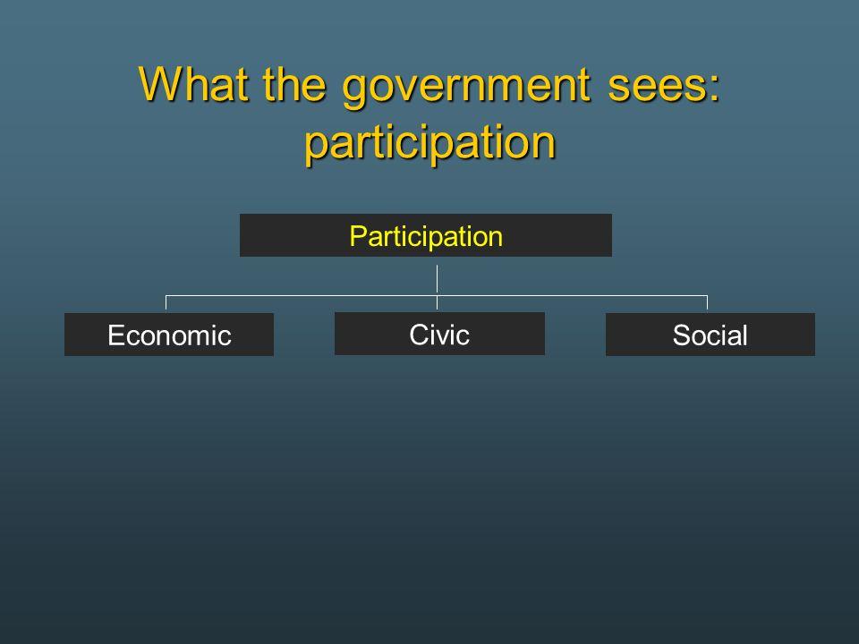 What the government sees: participation Participation Economic Civic Social