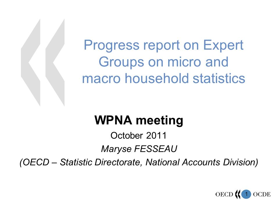 1 Progress report on Expert Groups on micro and macro household statistics WPNA meeting October 2011 Maryse FESSEAU (OECD – Statistic Directorate, National Accounts Division)