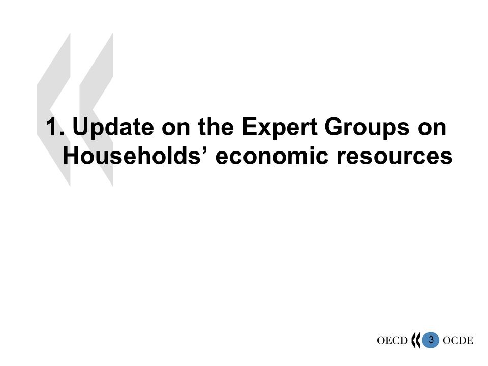 3 1. Update on the Expert Groups on Households economic resources