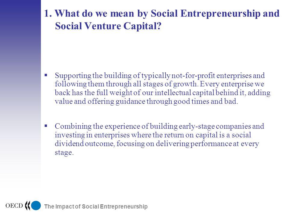The Impact of Social Entrepreneurship 1.
