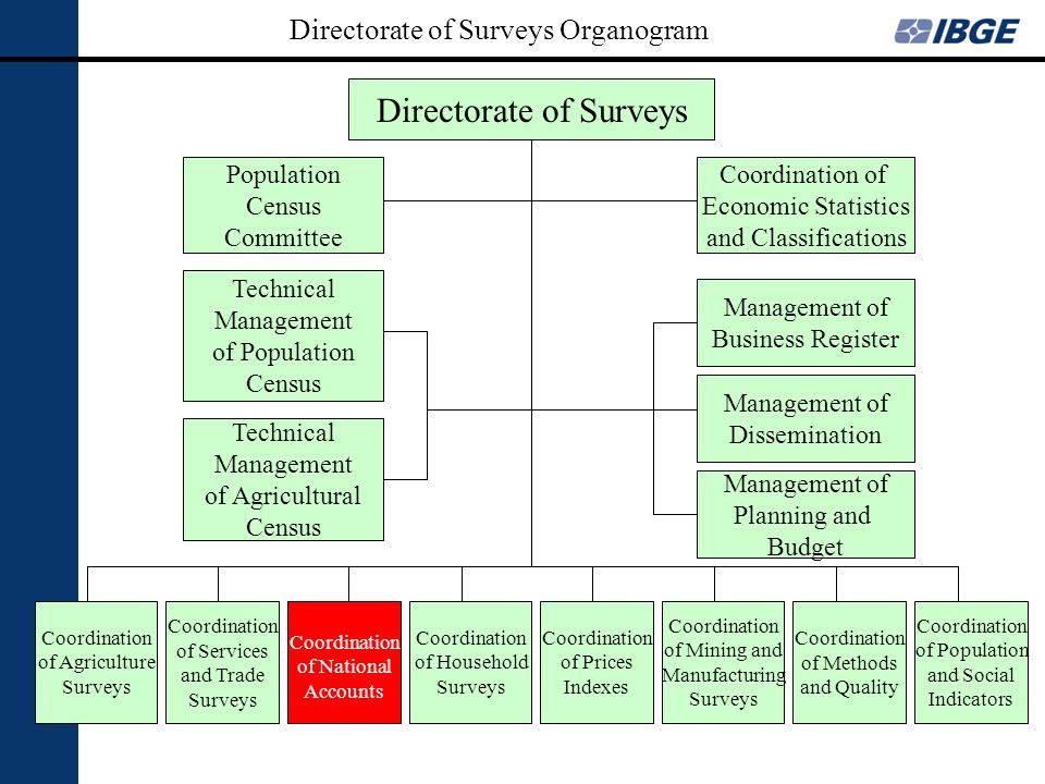 Directorate of Surveys Organogram Directorate of Surveys Coordination of Economic Statistics and Classifications Management of Business Register Manag