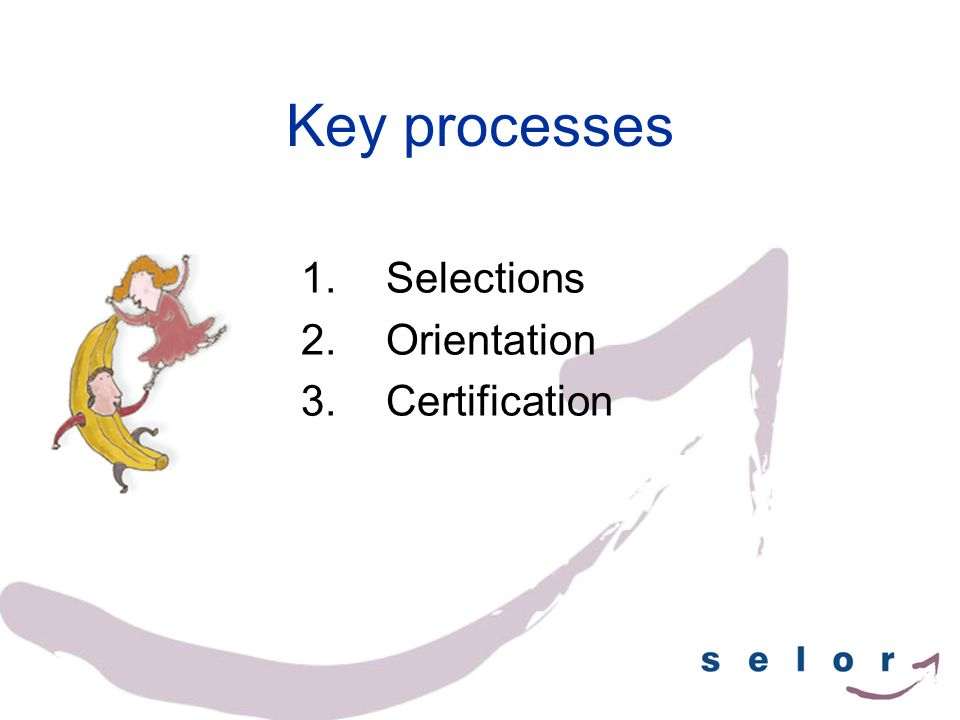 Key processes 1.Selections 2.Orientation 3.Certification