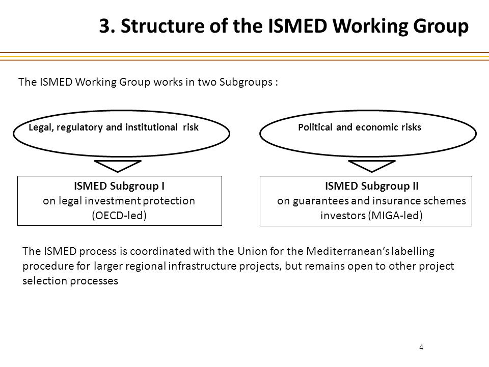 4 Political and economic risks ISMED Subgroup II on guarantees and insurance schemes investors (MIGA-led) Legal, regulatory and institutional risk 3.