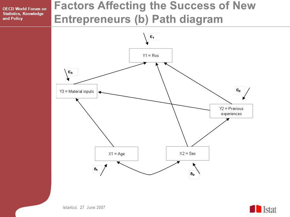 Factors Affecting the Success of New Entrepreneurs (b) Path diagram Istanbul, 27 June 2007 OECD World Forum on Statistics, Knowledge and Policy