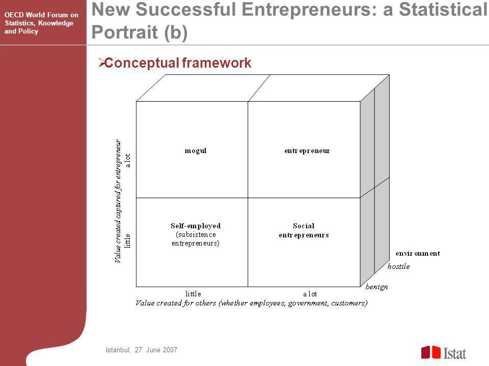Conceptual framework New Successful Entrepreneurs: a Statistical Portrait (b) Istanbul, 27 June 2007 OECD World Forum on Statistics, Knowledge and Policy