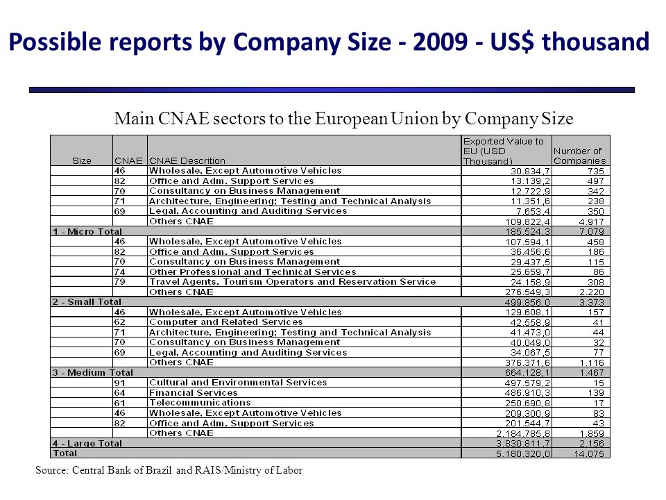 Possible reports by Company Size - 2009 - US$ thousand Main CNAE sectors to the European Union by Company Size Source: Central Bank of Brazil and RAIS/Ministry of Labor