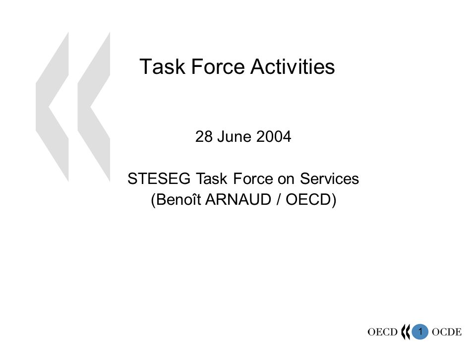 1 Task Force Activities 28 June 2004 STESEG Task Force on Services (Benoît ARNAUD / OECD)