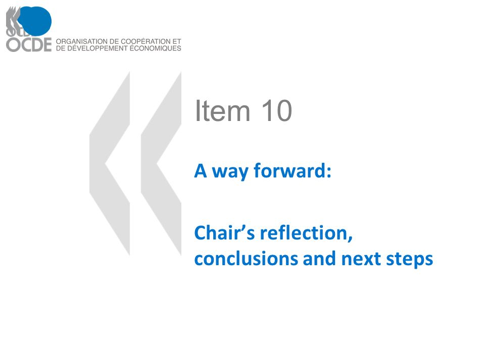 Item 10 A way forward: Chairs reflection, conclusions and next steps